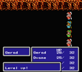 FFIII NES Level Up