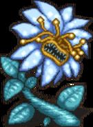 FFD Sea Flower