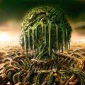Iifa-Tree-Artwork3