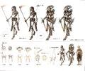 Skeleton concept