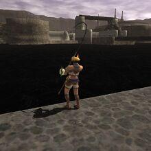 Fishing FF11 4.jpg
