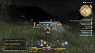 FFXIV Levelup