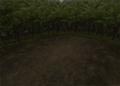 Forest2-ffix-battlebg