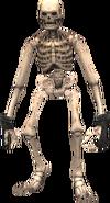 Skeleton 1 (FFXI)