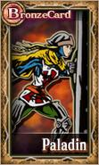 Knightsofthecrystals-PaladinFemale