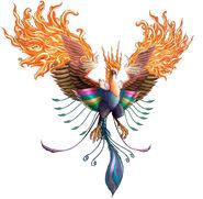 Cc-phoenix