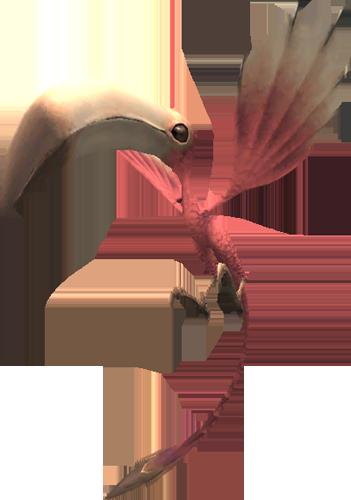 Colibri (Final Fantasy XI)
