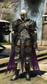 FFXIV The Griffin 1