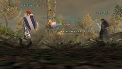 Diamondhide Blue Magic from FFXI.jpg