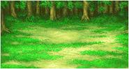 FFII Background Forest