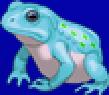 TAY PSP Frog Portrait 1