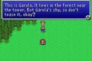 FFV garula