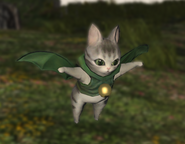 FFXIV Gaelikitten screenshot
