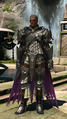 FFXIV The Griffin 2