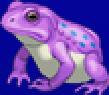 TAY PSP Yang Frog Portrait