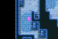 FFII Ice Damage Floor