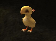 FFXI Chocobo Chick