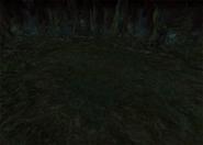 EvilForest2-ffix-battlebg
