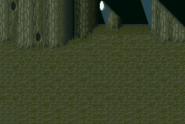 FFV Great Forest of Moore SNES BG