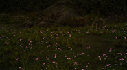 Pink-flowers-FFXV