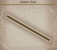 Bravely Default Oaken Pole