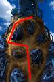 Condor War enemy path 12