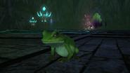 FFXIV Toad Status