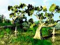 Unused FFIX Tree Test Roozbeh 4