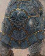 Silicon Tortoise FFXII