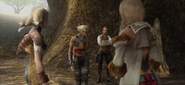 Party-at-Sochen-Cave-Palace-FFXII-TZA