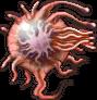 FF4PSP Prokaryote