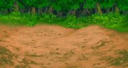 FFVA Forest BG 2