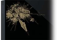 FFXIV A Realm Reborn Edition PS4 Close-up