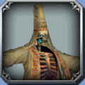 DFFOO Skull Wizard Icon