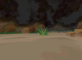 Animal Burrow Background