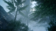 Nebulawood-Trees-FFXV.png