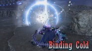 DFF2015 Binding Cold