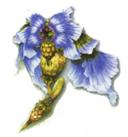 FFXIII2 enemy Dendrobium