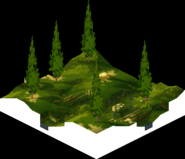 Sweegy Woods 2