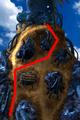 Condor War enemy path 2