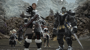 FFXIV Warriors Of Darkness In Game