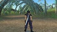 VIICC Banora - Apple Orchid