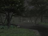 Ronfaure (Final Fantasy XI)