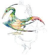 Bird FFXI Art