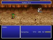 TAY Wii Human Kite