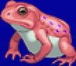 TAY PSP Frog Portrait 2