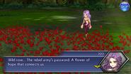 OO Maria Roses