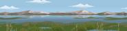 Wetlands Background Brigade