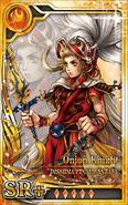 DFF Onion Knight SR+ F Artniks