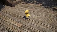 FFXIV Chocobo Chick
